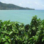 Фото 18 с пляжа Камала