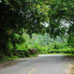 Фото 3 внутри Sabai Corner Bungalows