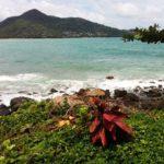 Фото 35 с пляжа Камала