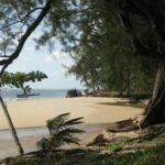 Пляж Най Янг на Пхукете фото номер 3
