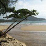 Пляж Най Янг на Пхукете фото номер 8