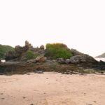 Пляж Януи фото номер 8