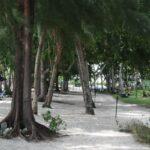 Фото номер 11 с пляжа Три Транг