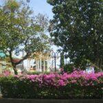 Фото номер 23 парка Saphan Hin в Пхукет-Тауне
