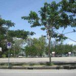 Фото номер 24 парка Saphan Hin в Пхукет-Тауне
