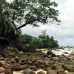 Фото номер 5 с пляжа Лаем Синг