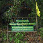 Фото парка Кхао Пхра Тхео номер 1