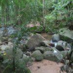 Фото парка Кхао Пхра Тхео номер 10