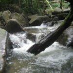 Фото парка Кхао Пхра Тхео номер 8