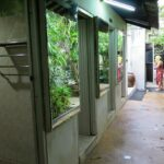 Фото тайской бани на Чалонге номер 2