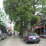 Фото улиц Пхукет-Тауна номер 24