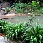 Водопад Кату фото номер 4