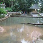Водопад Кату фото номер 9