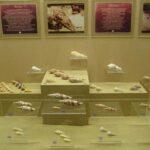 Музей морских раковин фото номер 26