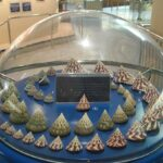 Музей морских раковин фото номер 39
