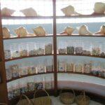 Музей морских раковин фото номер 56
