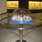 Музей морских раковин фото номер 8