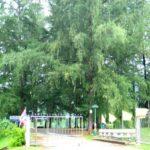 Парк Най Харн фото номер 5