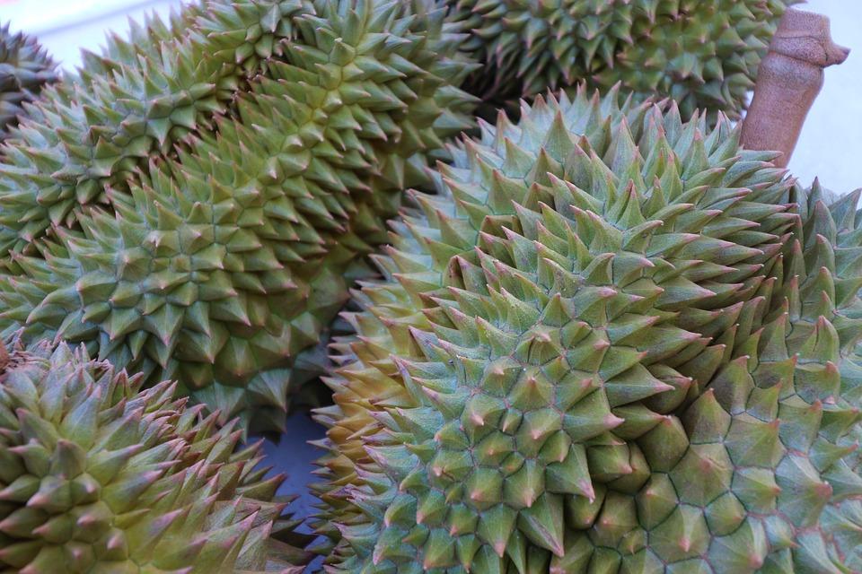 Дуриан. фрукт Таиланда.
