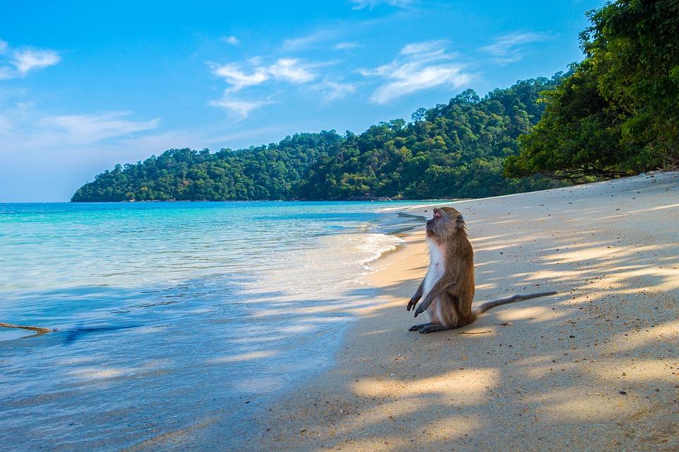 Остров Ко Липе, Таиланд